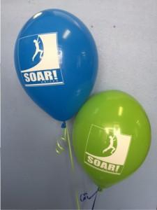 soar-united-blue-and-green